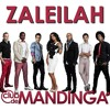 Zaleilah [127] [DJ.RN.SR] TRN REMIX