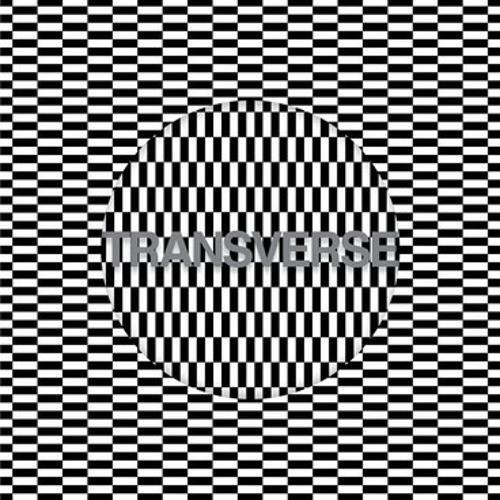 Carter Tutti Void - V2 (Edit)  (Transverse)