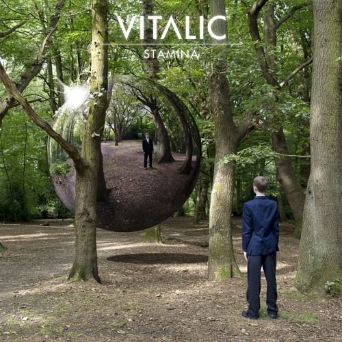 Vitalic - Stamina   Rave Age Album