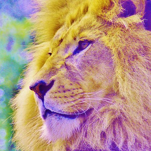 lion of comarre