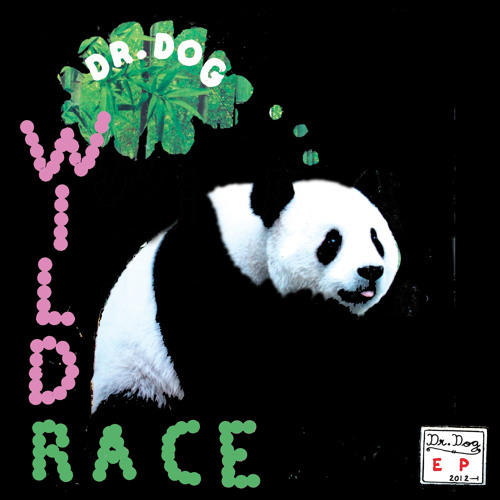 Dr. Dog- Wild Race