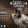 Mixaloop Acapella Loops Vol 34