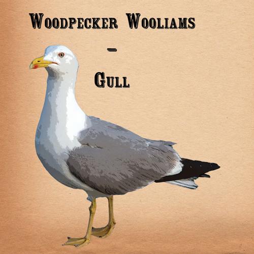 Woodpecker Wooliams - Gull