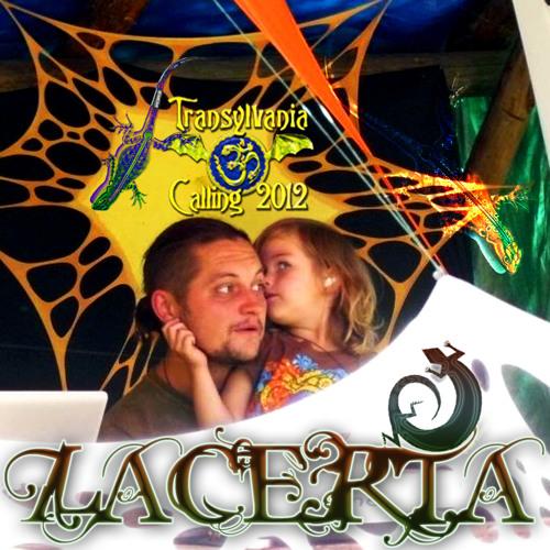 Lacerta & Amrita - LIVE on Transilvania Calling 2012