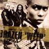 Skunk Anansie - Brazen (Weep) (Perfecto Remix)