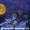 "The Mountain Goats ""Night Light (Demo)"""