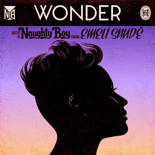 Naughty Boy feat. Emeli Sandé - Wonder (Kidnap Kid Remix)