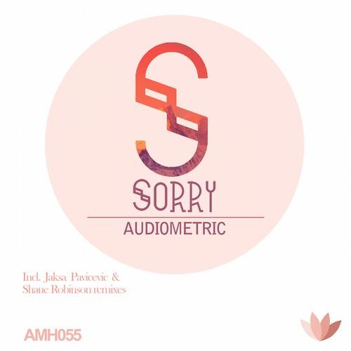 Audiometric - Sorry (Shane Robinson Remix)