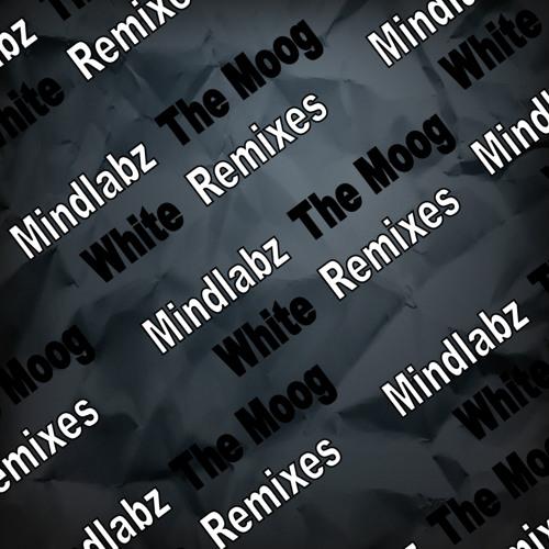 Mindlabz - The Moog (Rajiv Jay Remix) [Out now on Beatport!]