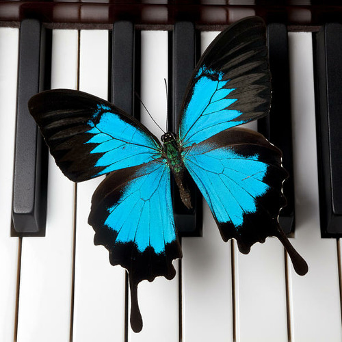 Breathe - Featuring GALINA on Piano.