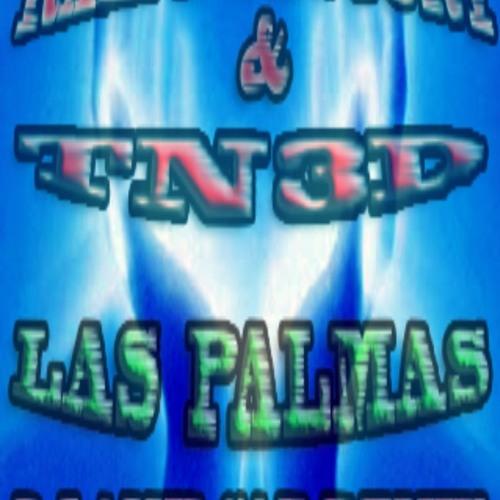 RALPH FACTORY & TN3D - LAS PALMAS (DJ AMILCAR REMIX)