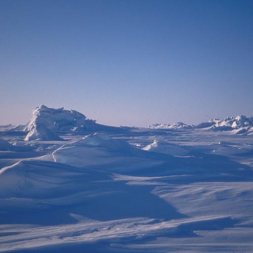 Over Arctic Fields - Milana