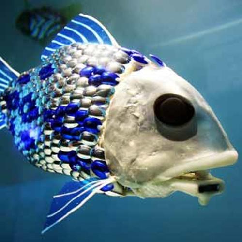Hehe - Electronic Fish(Free ↓)