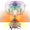 AUSTERO - Rise n shine