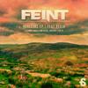 Feint - Horizons feat. Veela (Moleman Remix) FULL