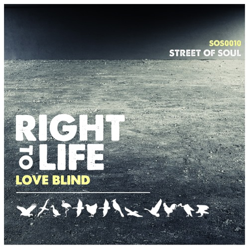 Right To Life - Love Blind (Co-produced by Micky More)