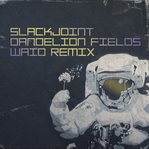 Slackjoint - Dandelion Fields (Waio Remix)