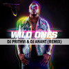 Dj Prithvi & Dj Anant - Wild Ones - Florida Ft. Sia (Remix)