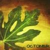 pixi .. october  '12