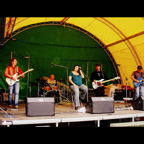 Self Destructive Blues (Bloosers cover - live 2012)