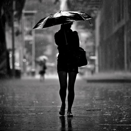 SirCut - bad weather report