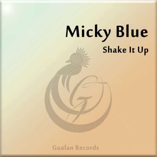 Shake It Up (Original Mix) by Micky Blue // OUT 2/14/2013
