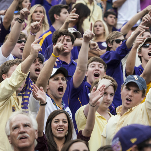 Geaux Tigers - First Down