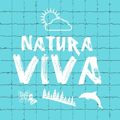 Sydo & Sean Angel - SileggaV (Original Mix) | Preview | Release 22.10.12 on Natura Viva Records
