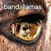 Bandallamas / Dancing in the Moonlight