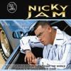 95 YO NO SOY TU MARIDO - NICKY JAM ( DJ SONG KROZ'MIX ) 2012