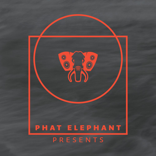 Phat Elephant Presents - Andreas Saag - Back to Life (Full Mix) (96kbps preview)