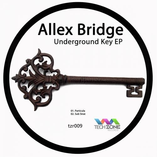 Allex Bridge - Particula (Original Mix)
