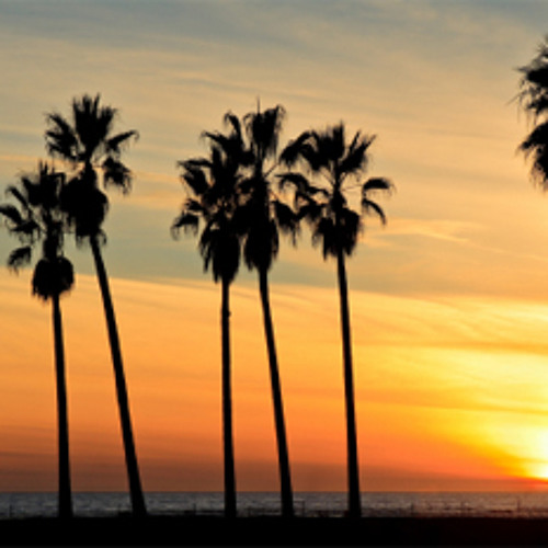 Gentrify Your City With Hipster Palm Trees