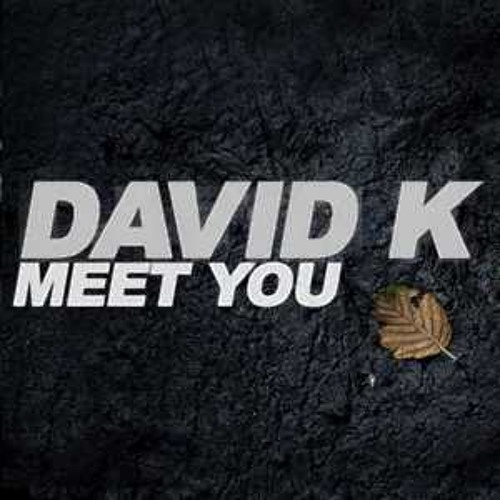 David K. - Meet You (Thomas Lizzara Remix) Snippet