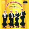 Tierra Caliente Los Armadillos Mix 2012-2013