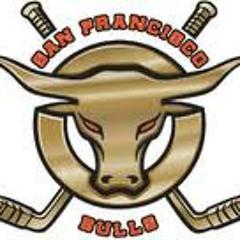 bulls hockey goal number 2