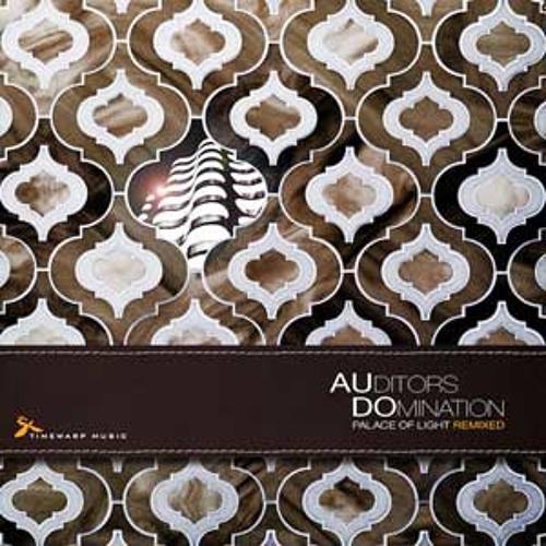 AUditors DOmination - Rempeto (Niles Philips remix)