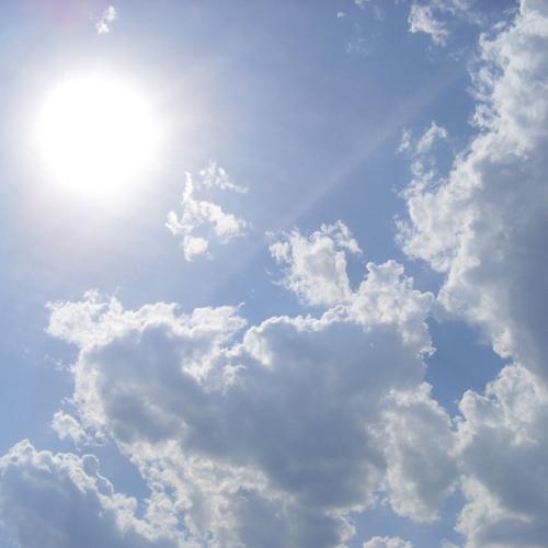 Raw • Flo - Sun Daze  (WIP)