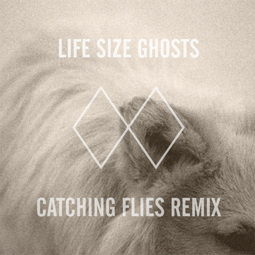 Life Size Ghosts (Catching Flies Remix)