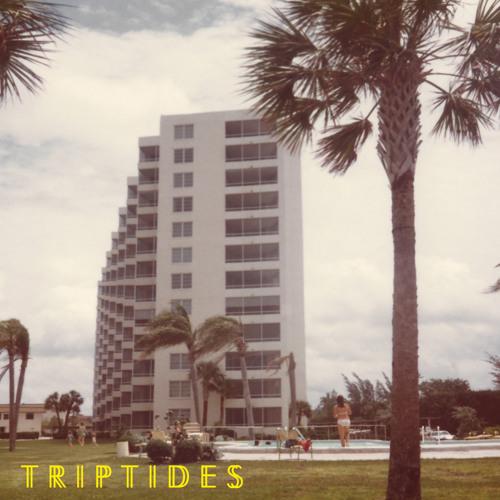 Triptides - Shark Attack