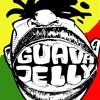 @GuavaJelly_PDG - bongkar ( iwan fals cover live )