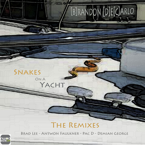OUT NOW!!! Snakes On A Yacht - Brandon DeCarlo (Demian George RMX)