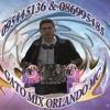 Electronica mix (GATO MIX ORLANDO MC 095445136 - 086995485)