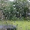 PHONOCLUB - Like a Summer Rain