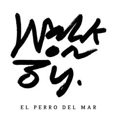 El Perro Del Mar - Walk On By (Saint Etienne Remix)