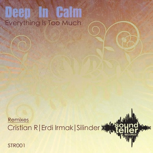 Deep In Calm - Everything Is Too Much [Silinder Remix] 192 clip