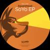 Pets 24  Squarehead - SoYo EP
