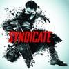 Skrillex - Syndicate (Skrillex Remix)