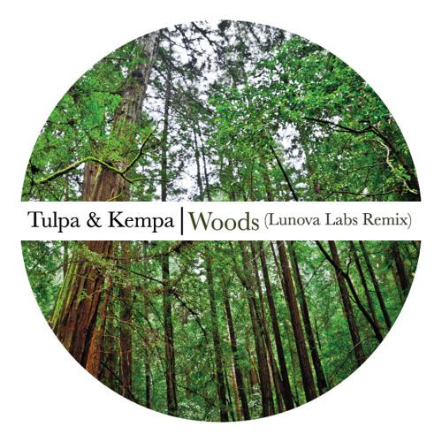 Tulpa & Kempa - Woods (Lunova Labs Remix)