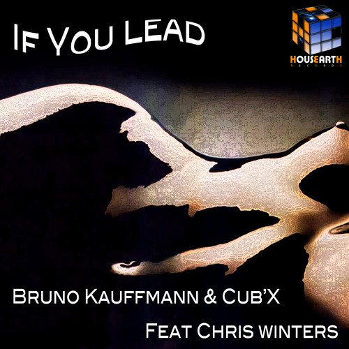 """BRUNO KAUFFMANN & CUB'X FEAT CHRIS WINTERS """"IF YOU LEAD"""" © 2012 HOUSEARTH RECORDS"""